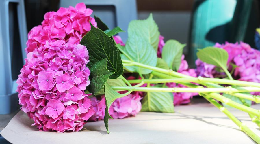 la femme fleur flower truck the denizen. Black Bedroom Furniture Sets. Home Design Ideas