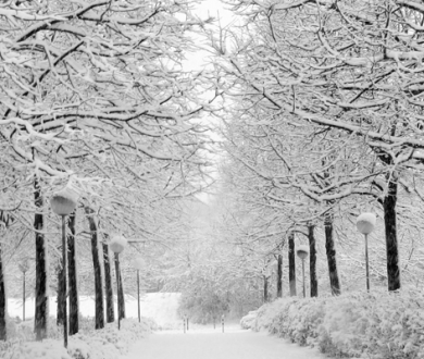 4 reasons you should be making the most out of winter