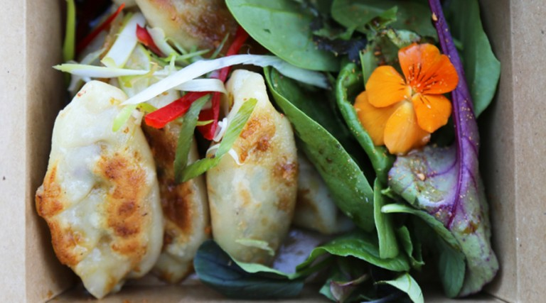 Pop-Up: Very Good Dumplings