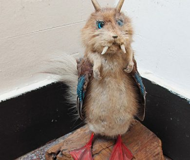 The Friday Feed: Crap Taxidermy