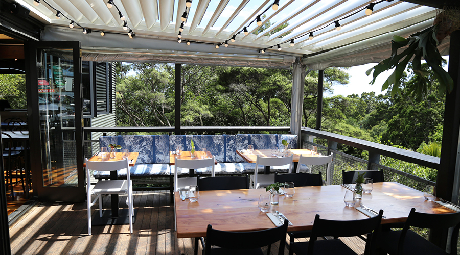 Iti will see you dining amidst the treetops denizen