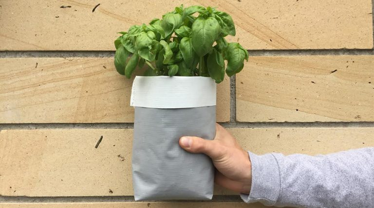 No backyard? No problem — you need the urban grow kit sprouting change