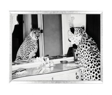 Cheetah Looking In Mirror Print