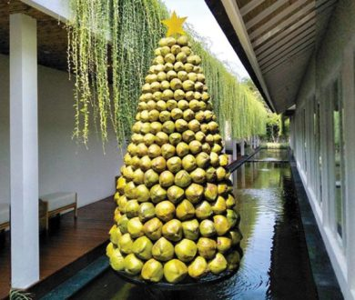 Coconut Christmas tree