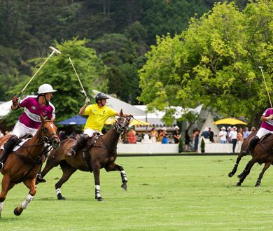 The Ultimate NZ Polo Open Experience with Land Rover