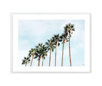 Palm Trees Squad print