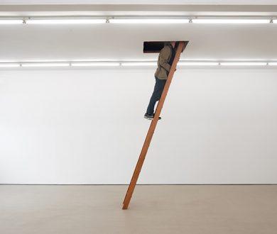 Work in Progress: A Q&A with Venice Biennale representative Dane Mitchell
