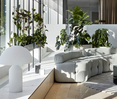 These are the best indoor plants for every room of your house