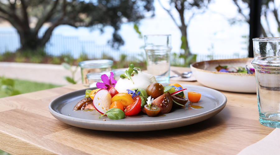 Chelsea Bay Launches A New Visitor Experience With New Eatery Sugar