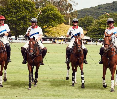 Party pics: Inside all the action from last weekend's Land Rover NZ Polo Open