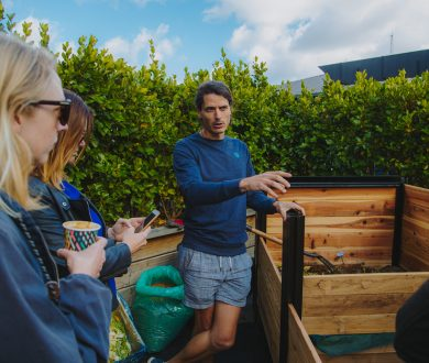 Viaduct Harbour is leading the sustainable charge as Auckland's first urban composting site
