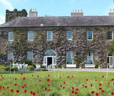 Life-Changing Journeys: This Irish haven offers an unparalleled culinary experience