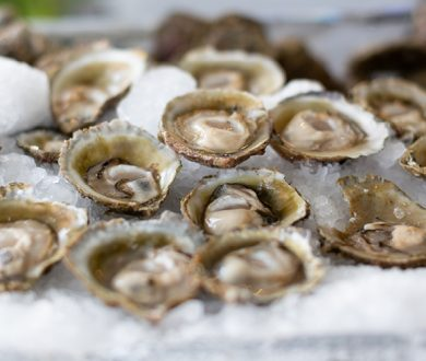 Bluff Oyster season is in full-swing at Princes Wharf and here is what you need to know