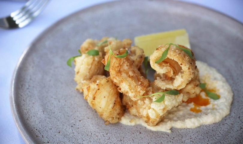 These restaurants are proving that the calamari is the quintessential entrée