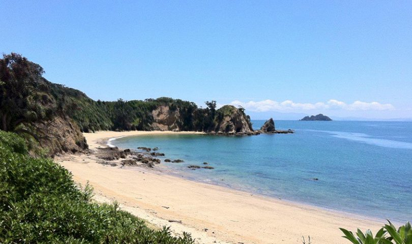 Waitangi Wishlist: suggestions for making the most of your day off work