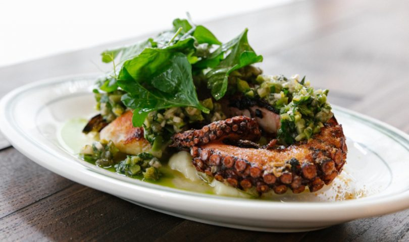 Denizen's definitive guide to Auckland's best octopus dishes