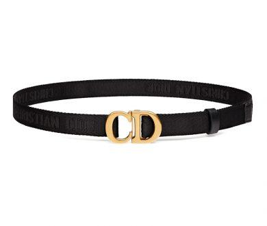 Christian Dior Saddle Belt