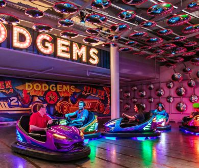 The best kids entertainment venues in Auckland, as voted by you