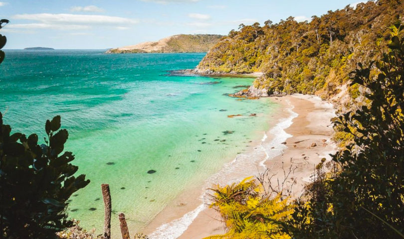 Parker & Co founder Lynne Parker shares an insider's guide to Stewart Island