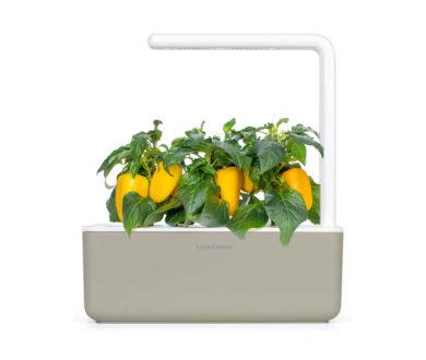 Click & Grow Smart Garden